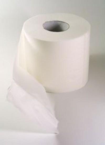 toilet-paper-4_2210861